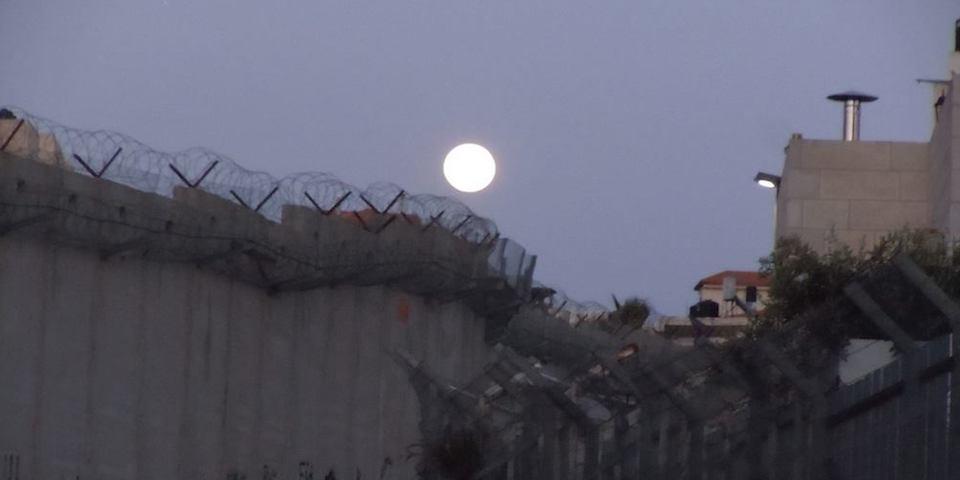 espatrio in palestina